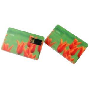 Cartes USB personnalisé